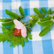 Stock Photo: Strawberry and flower on fabric background