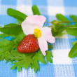 Strawberry and flower on fabric background — Stok fotoğraf