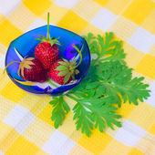 Three Strawberries lying on plate with checkered — Stok fotoğraf
