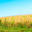 Nature landscape background — Stok fotoğraf