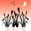 Royalty-Free Stock Vector Image: The reeds