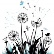 The dandelions - Stock Vector