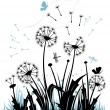 The dandelions - Image vectorielle