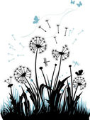 The dandelions — Stock Vector