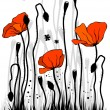 The poppies - Imagen vectorial