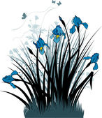 Floral background with the irises — Vector de stock
