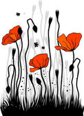 The poppies — Vector de stock
