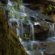 Waterfall Somersby Falls — Stock Photo