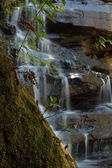 Waterfall Somersby Falls — Stock Photo