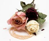Three Dry Roses and Pearl Necklace — Stock Photo