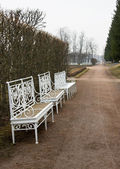 Three Forged Benches in Autumn Park — Stock Photo