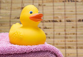 Rubber Duck on the Towel — Stock Photo