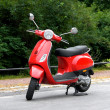 One Red Scooter in the Park - Stock Photo