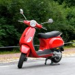 One Red Scooter in the Park - Lizenzfreies Foto