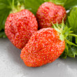 Three Large Red Strawberries - Stock Photo