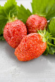 Three Large Red Strawberries — Stock Photo