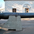 Stock Photo: Old ship gun