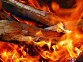 Fire wood in a fire — Stock Photo