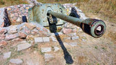 Old German cannon — Stock Photo