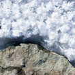 Stock Photo: Ice and stone