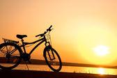 1269 Bicycle — Stock Photo
