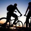 Bicycler - Stock Photo