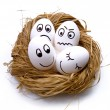 Easter funny eggs in nest — Stock Photo