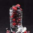 Cranberry and black currant - Stock Photo