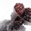 The frozen blackberry in a glass. — Stock Photo #1451016