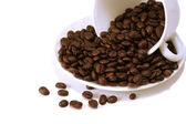 Coffee beans in white cup — Stock Photo