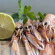 Platter of langoustine — Stock Photo
