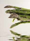 Asparagus — Stock Photo