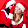 Two happy young Santa girl talking — Stock Photo #2009039