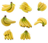 Collection of bananas cluster. — Stock Photo