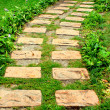 Green path — Stock Photo #1453821