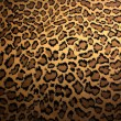 Leopard skin - Stock Photo