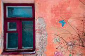 Old wall with window and butterflies — Stock Photo