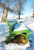 Benche in a park covered with snow — Stock Photo