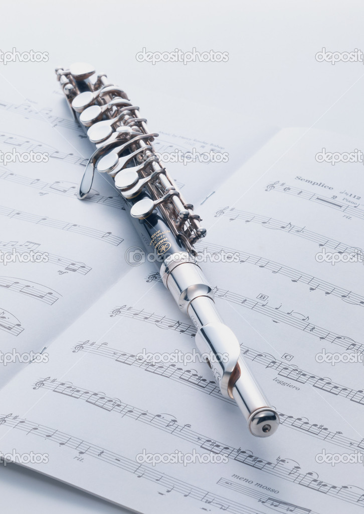 Musical instruments and performance  — Stock Photo #1454513