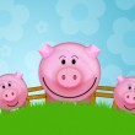 Pig — Stock Photo #1457126