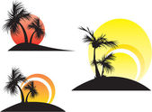 Palm trees on a sunset — Stock Vector