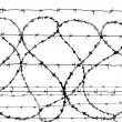 Barbed wire — Stock Photo #1452134