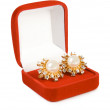 Earrings in red box - Stock Photo