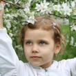 Stock Photo: Little girl and a blossoming cherry