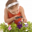 Young girl researching a flower — Stock Photo