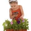 Young girl researching a flower — Stock Photo #2389173