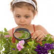Child is looking through a magnifying gl — Stock Photo