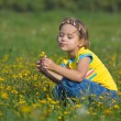 Cute little girl on a meadow — Stock Photo