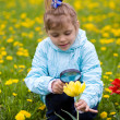 Young girl researching a flower - Stock Photo