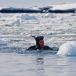 Diver near the ice — Stockfoto